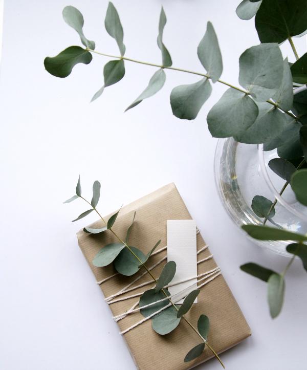 emballages cadeaux faits main craft et eucalyptus